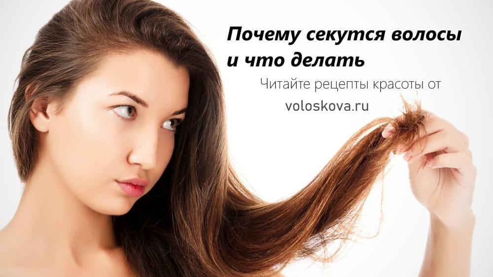 Почему секутся волосы. Основные причины и что делать